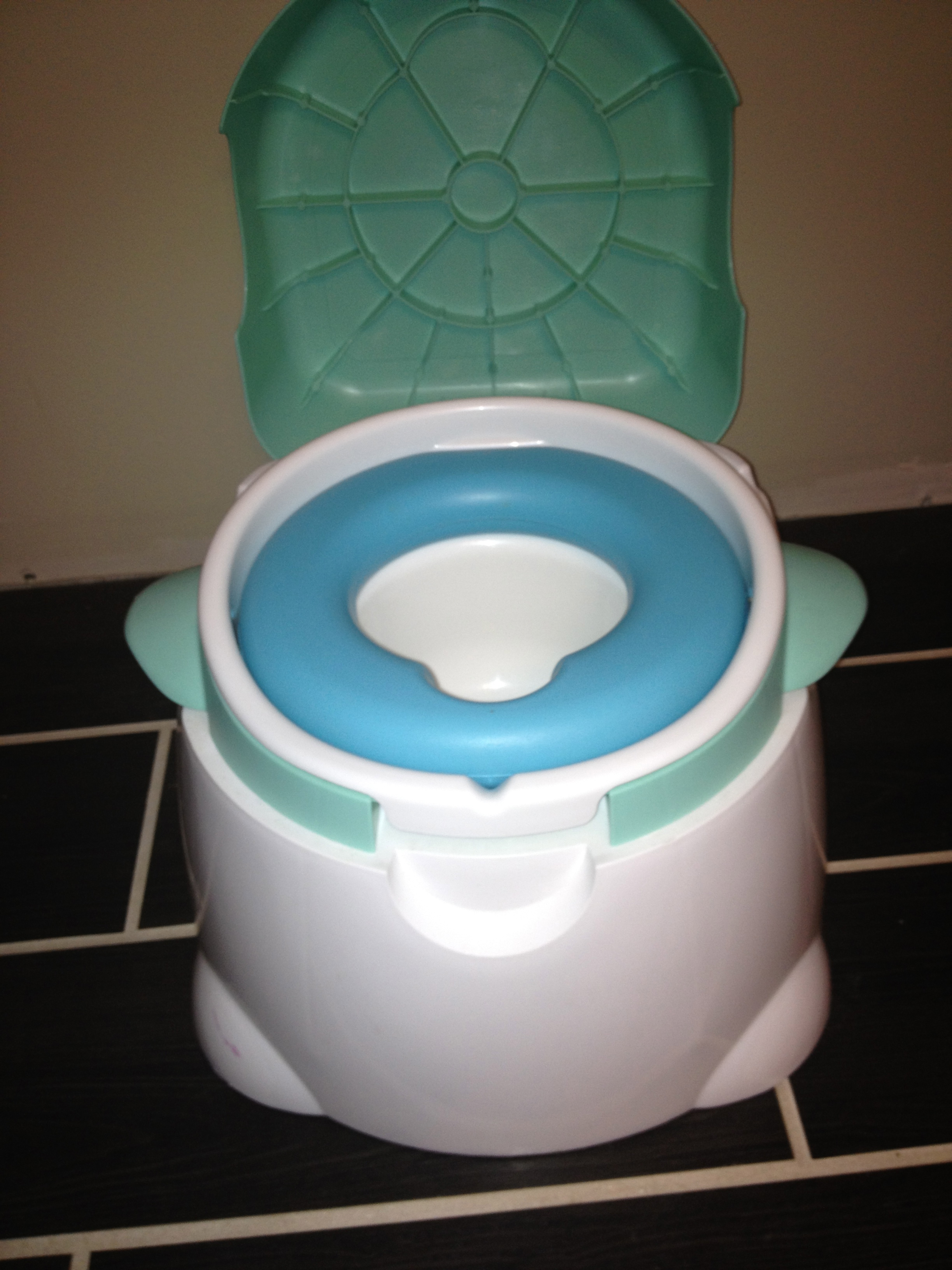 Potty Training is NOT for the Weak