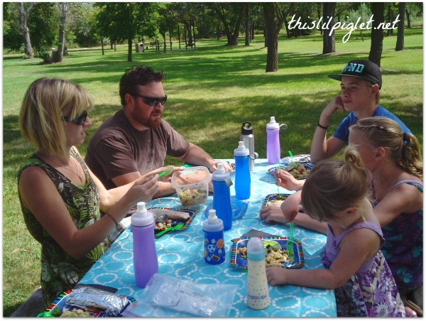 Year Round Picnic Ideas and Giveaway