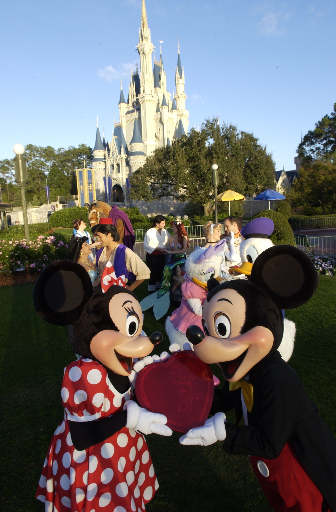 Walt Disney World and Disneyland Celebrate Valentines