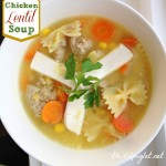 Ground Chicken Lentil Soup