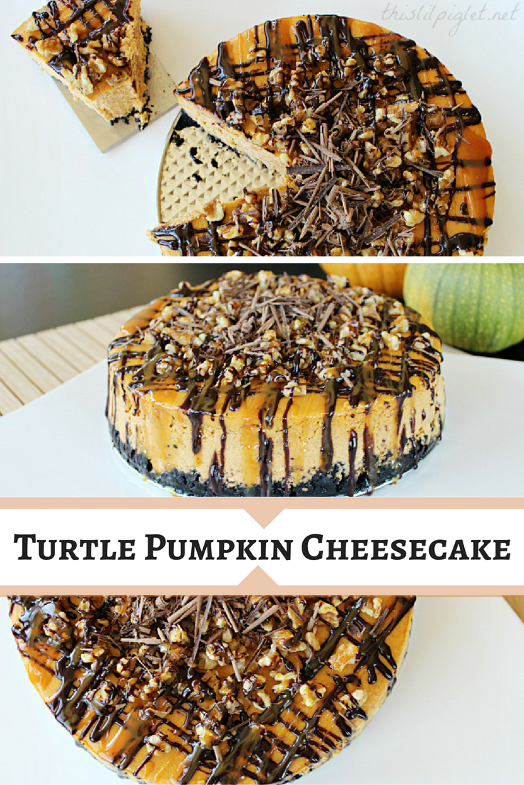 Turtle Pumpkin Cheesecake // thislilpiglet.net