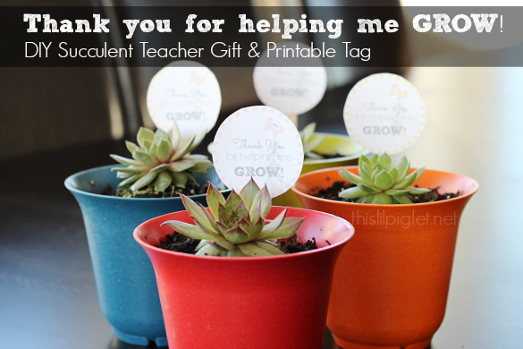 DIY Succulent Teacher Gift Printables