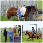 A Cowboy Experience Cattle Drive at Reesor Ranch Cypress Hills