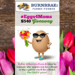 Inspire @BurnbraeFarms #Eggs4Moms $540 Giveaway