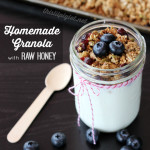 Homemade Granola with Raw Honey