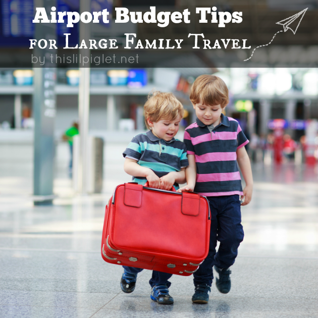 Airport Budget Tips for Large Family Travel