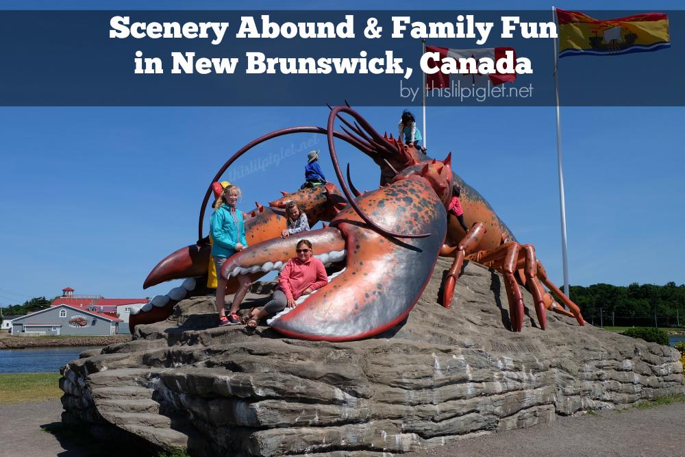 Scenery Abound Family Fun in New Brunswick Canada #LetsGONB