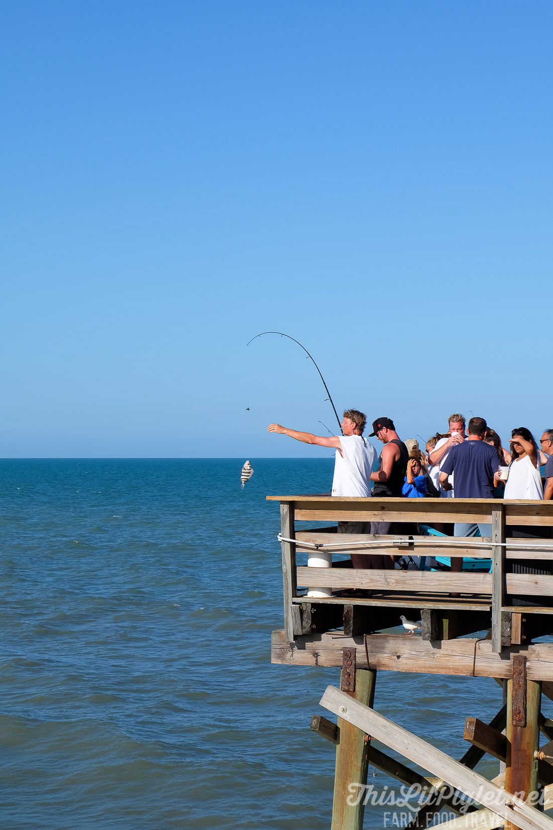 Things to do at Cocoa Beach on Florida's Space Coast - Fishing at Cocoa Beach via @thislilpiglet