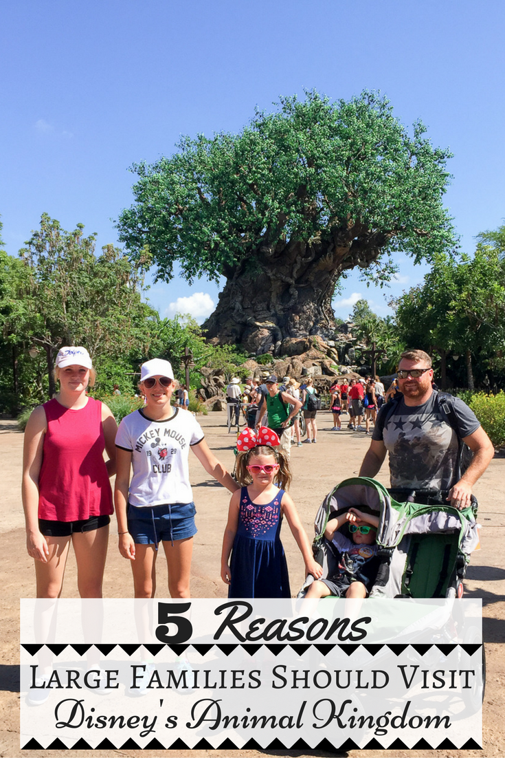 Large Family Travel: 5 Reasons Large Families Should Visit Disney's Animal Kingdom // via @thislilpiglet