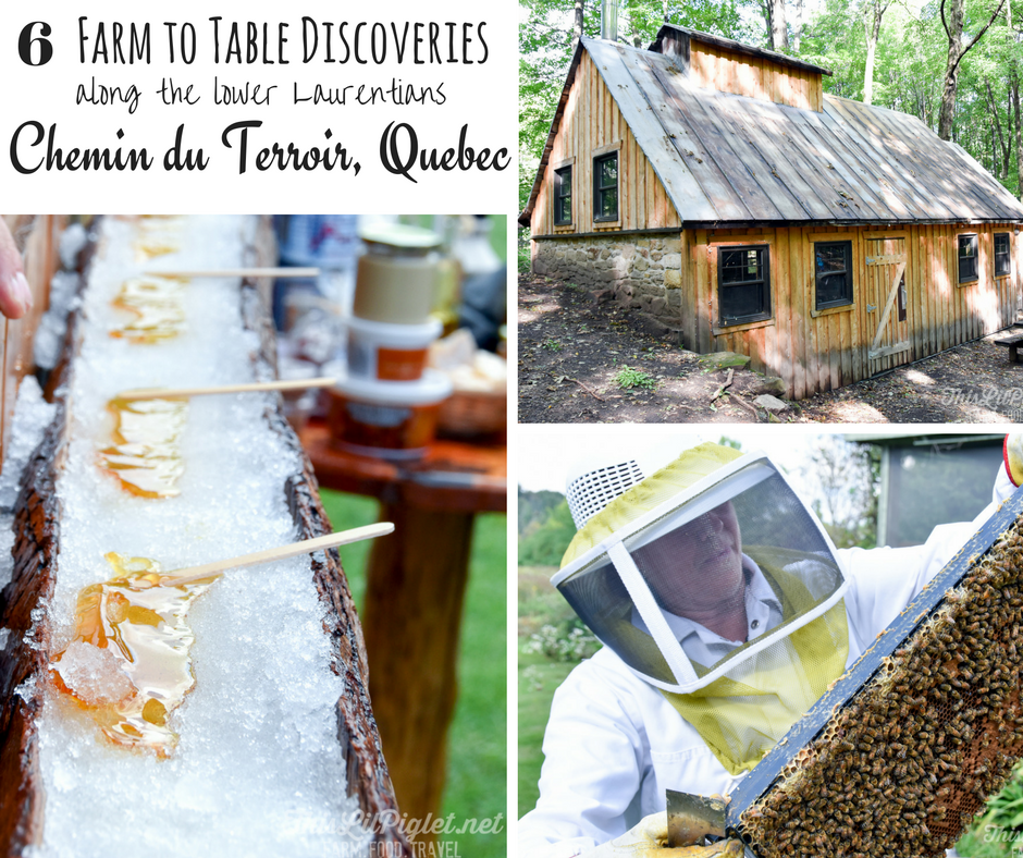 6 Farm to Table Discoveries along Chemin du Terroir, Quebec FB // thislilpiglet.net