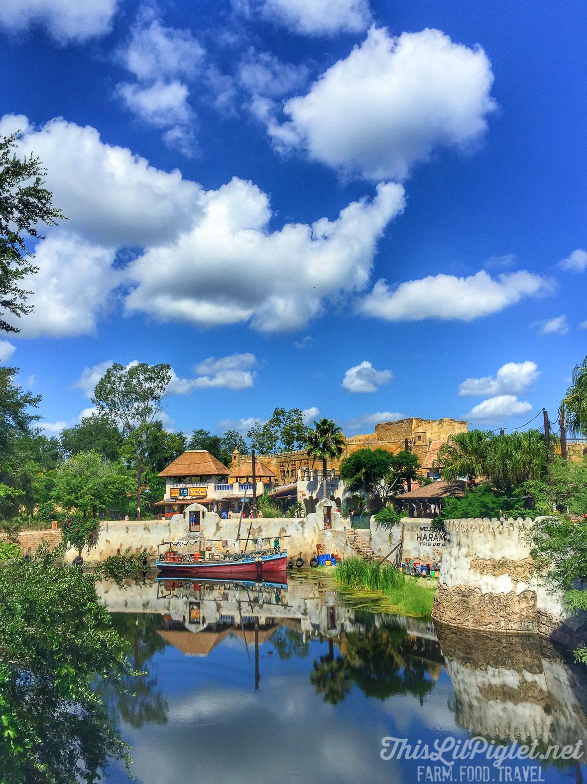 Walt Disney World Disney's Animal Kingdom Asia Kali River Rapids // thislilpiglet.net