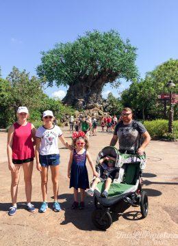 Walt Disney World Disney's Animal Kingdom Tree of Life // thislilpiglet.net