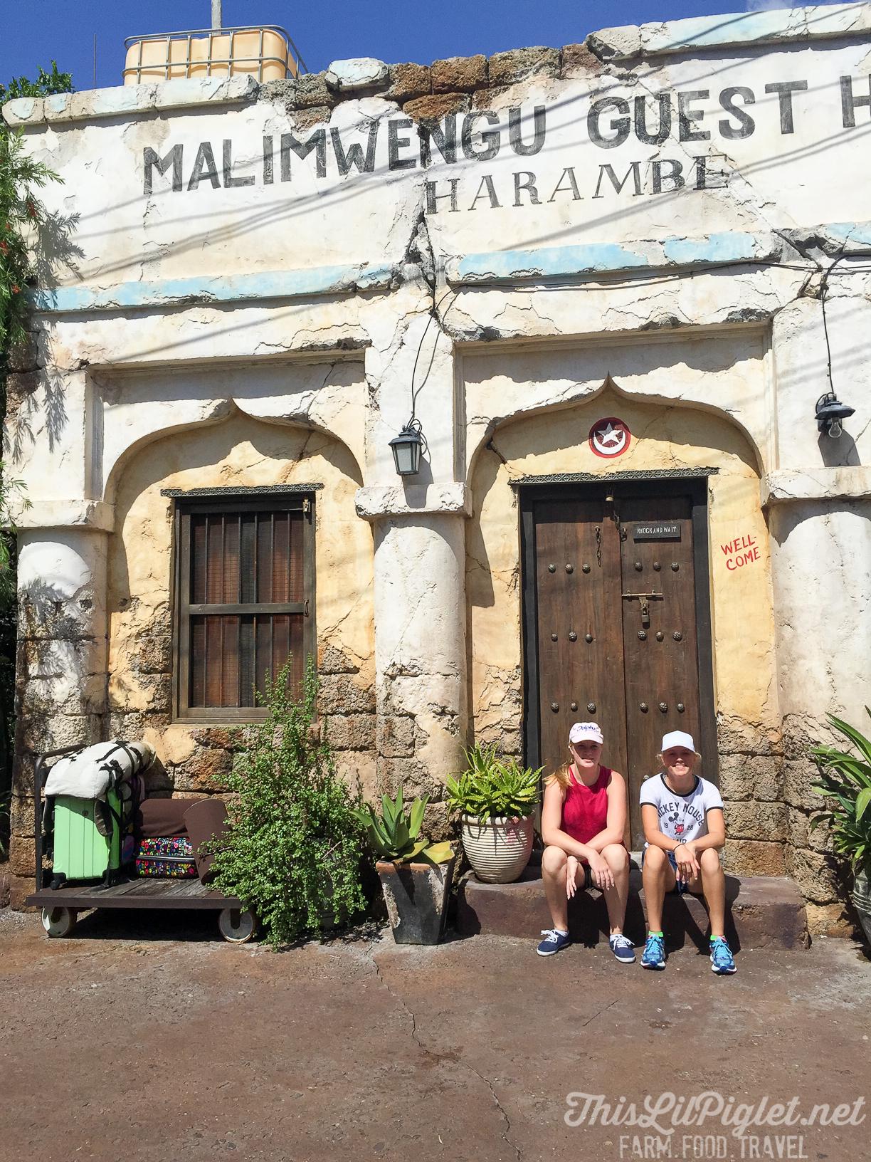Walt Disney World Disney's Animal Kingdom Asia Harambe Market // thislilpiglet.net