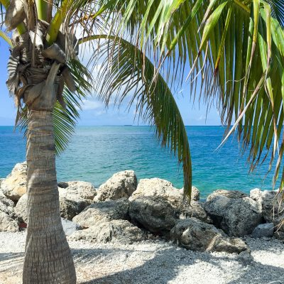 Bucket List Travel: #SeizetheKeys in Key West, Florida