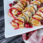 Stuffed Turkey Roll with Cranberry Sauce Vitamix Recipe