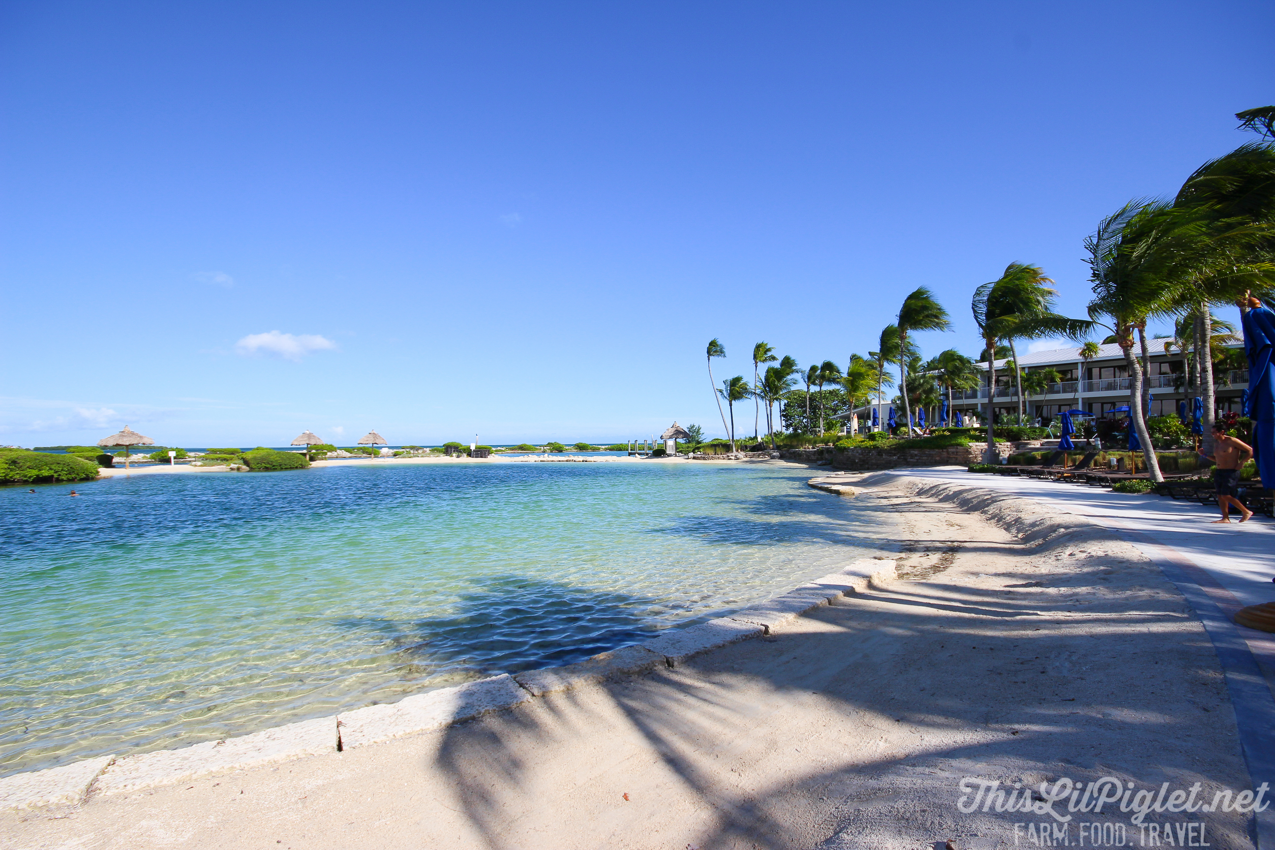 Luxury Family Travel at Hawks Cay Resort Beach in the Florida Keys // thislilpiglet.net