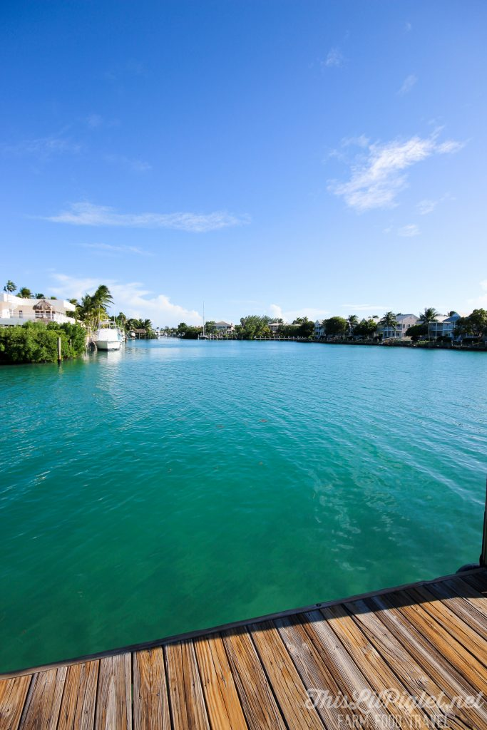 Luxury Family Travel at Hawks Cay Resort Marina in the Florida Keys // thislilpiglet.net