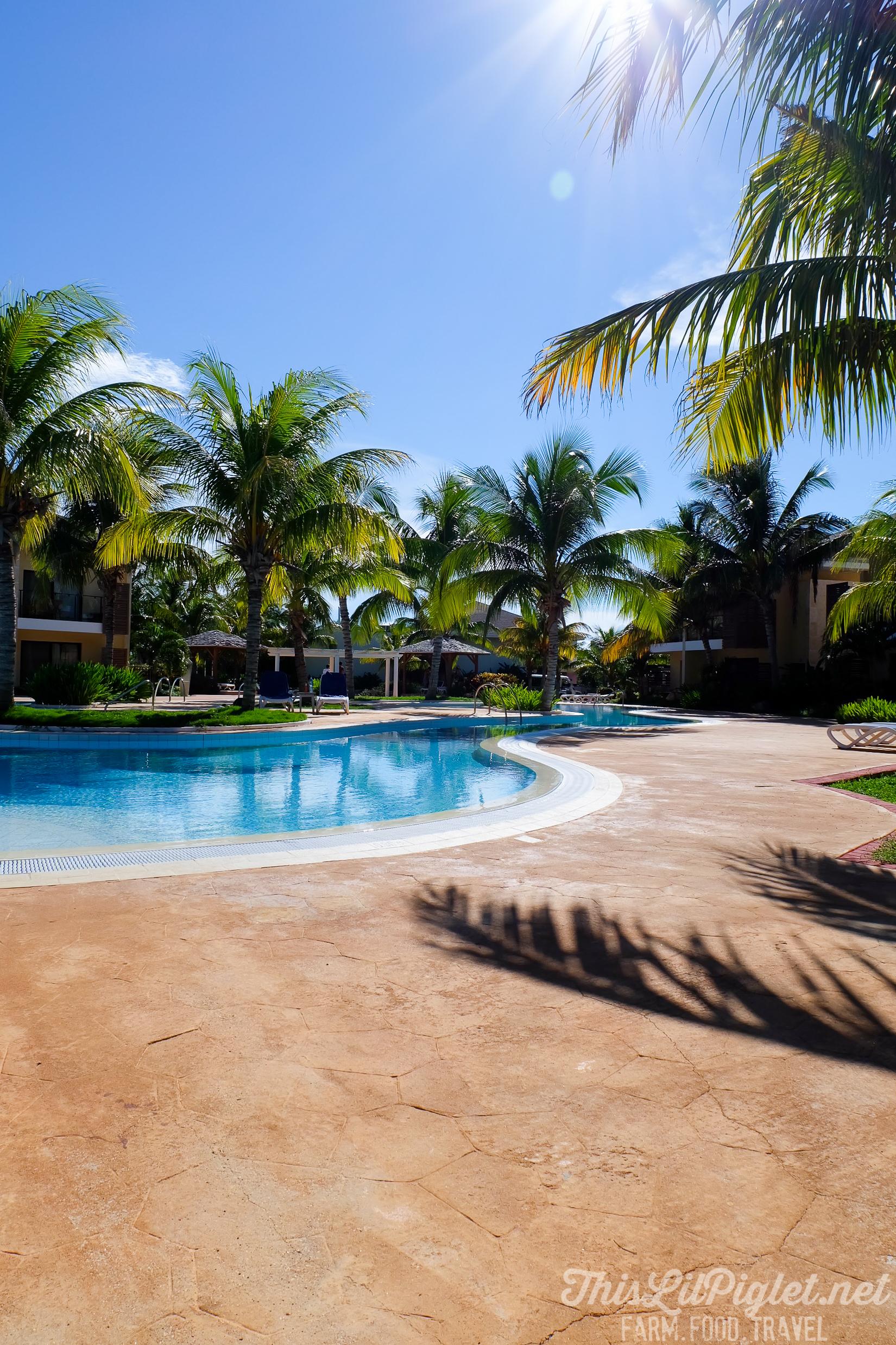 Cuba Couples Travel: Melia Buenavista Hotel Poolside // thislilpiglet.net