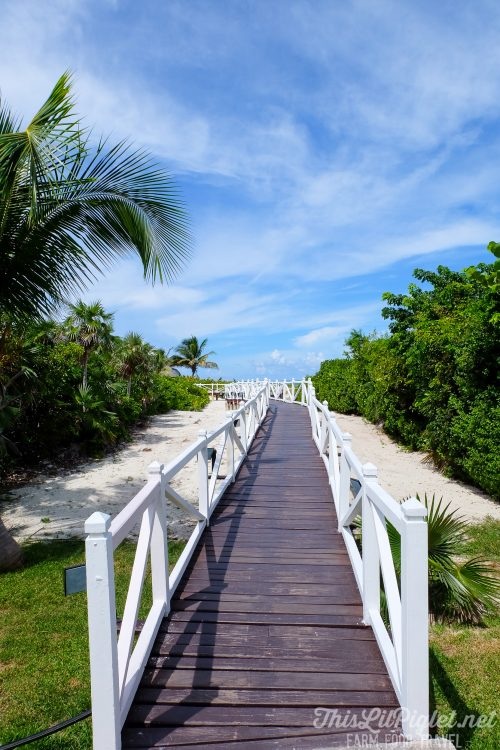 Cuba Couples Travel: Melia Las Duna Cuba Beach // thislilpiglet.net