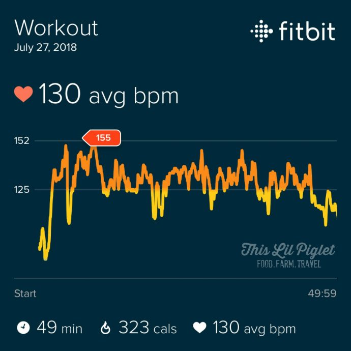 Fit Family Challenge to MOVE with Wearable Tech - Kangoo Heart Rate Results // thislilpiglet.net