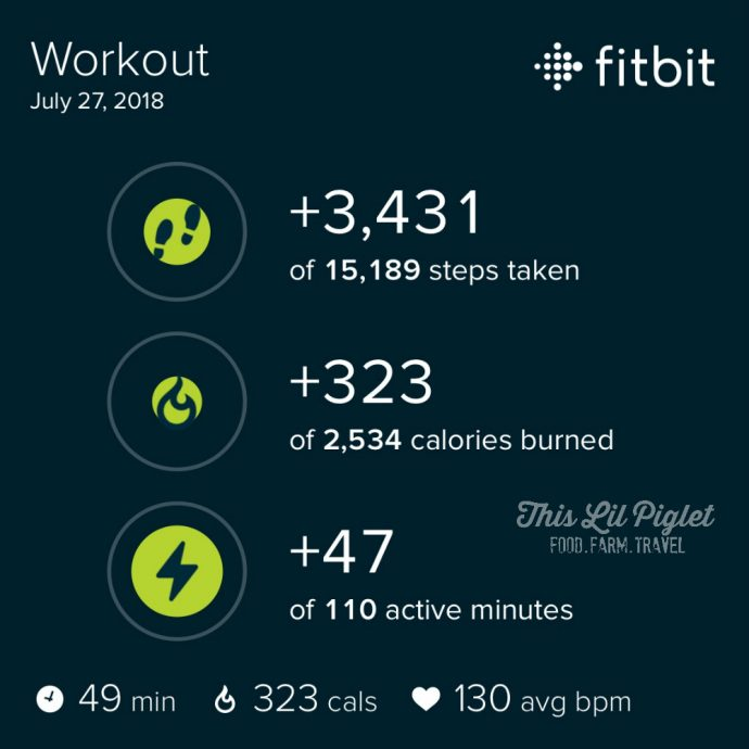 Fit Family Challenge to MOVE with Wearable Tech - Kangoo Steps Results // thislilpiglet.net