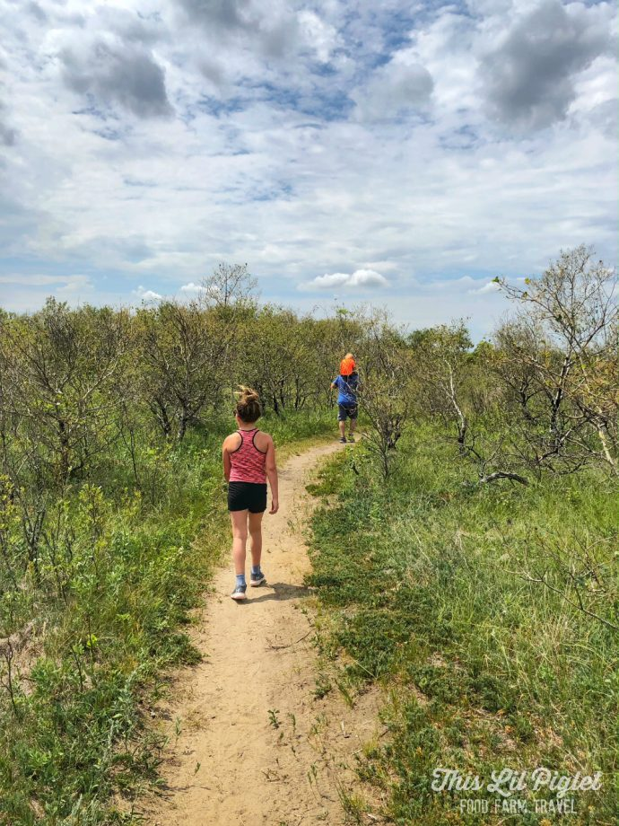 Fit Family Challenge to MOVE with Wearable Tech - Family Hiking Sand Dunes // thislilpiglet.net