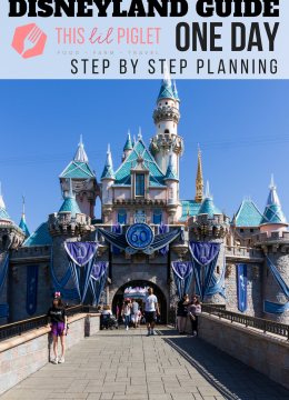 Disneyland Guide: ONE DAY Step By Step Planning // thislilpiglet.net